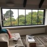 ultraslim loft room windows