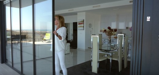 UltraSlim Slide & Swing Doors from SunSeeker Doors